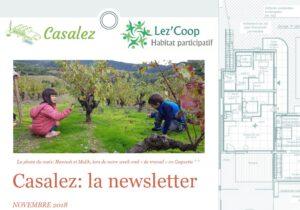Read more about the article Newsletter de novembre!