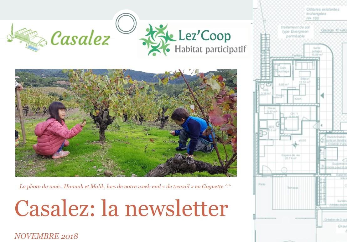 Newsletter de novembre!